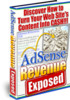 Thumbnail Adsense Revenue Exposed with MRR