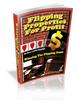 Thumbnail Flipping Properties for Profit MRR